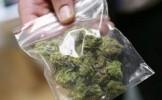 TRAFICANŢI DE DROGURI PRINŞI DE POLIŢIŞTI