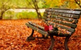 Horoscopul toamnei: ce momente romantice te asteapta